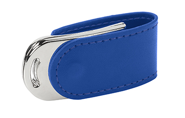 pds14-blue